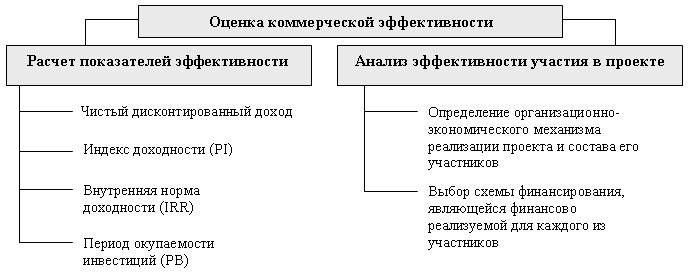 Сущность и структура инвестиционной программы - Оценка коммерческой эффективности